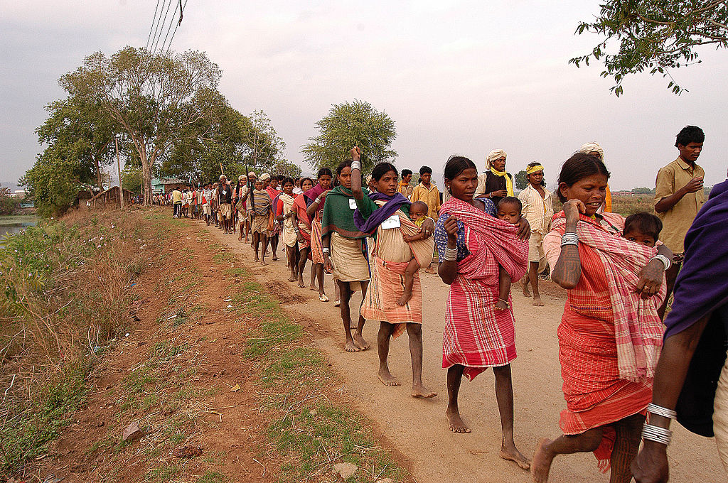 tribal livelihood in pandemic
